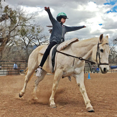 Part-time job opportunity for PATH certified riding and vaulting instructor